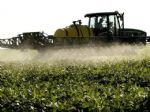 Cuidados após o plantio da soja